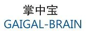 GAIGAL-BRAIN 掌中宝
